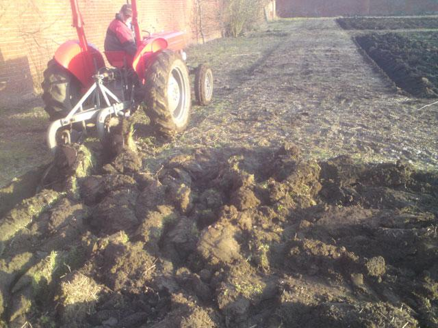 Tom ploughing up the first furrow in the walled garden ready to plant the first vines.
