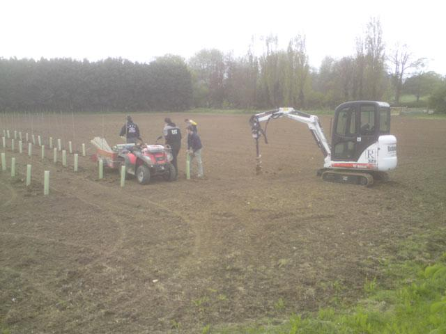 Invested in a mini digger to plant the big vineyard instead of planting by hand.